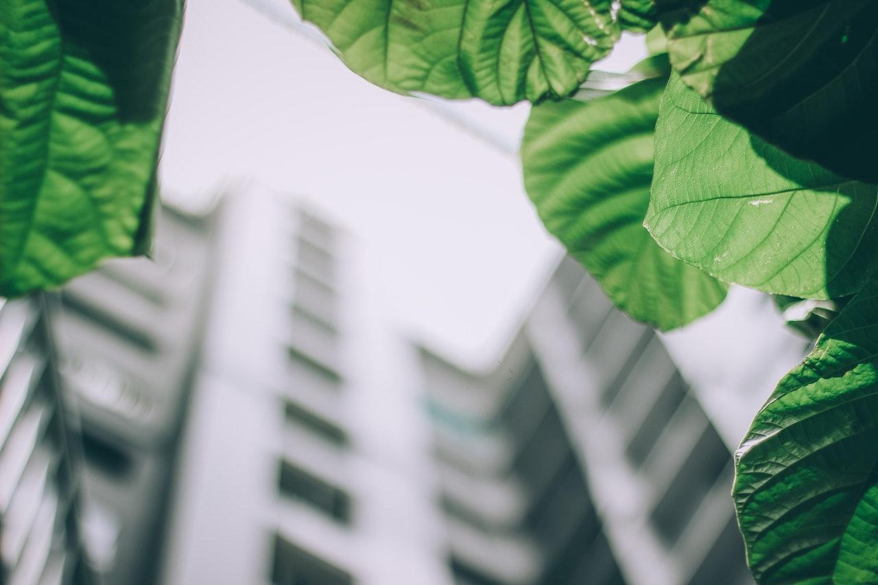 Digitale Instrumente fuer Nachhaltingkeit von Immobilien